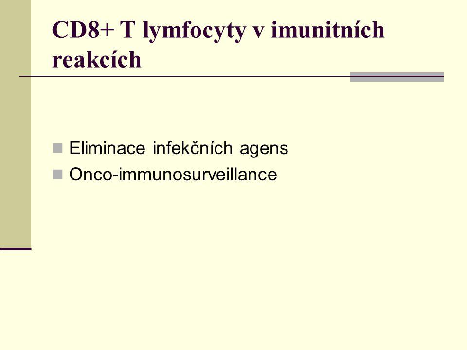 CD8+ T lymfocyty v imunitních reakcích