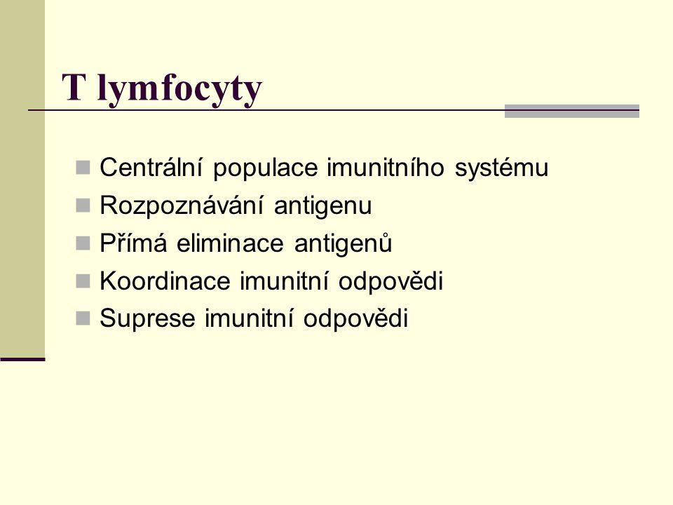 T lymfocyty Centrální populace imunitního systému