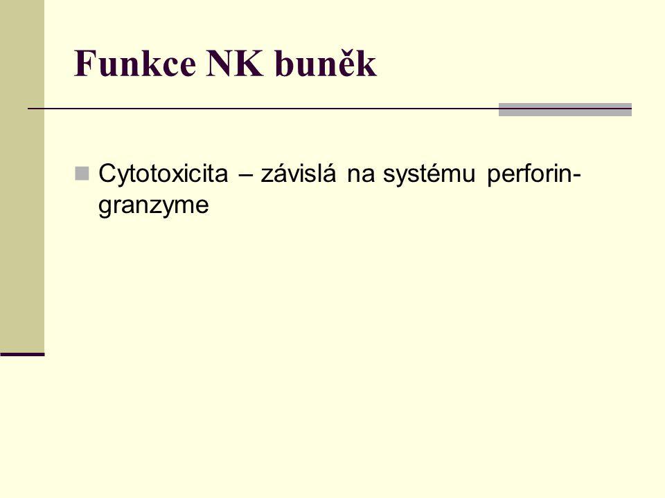 Funkce NK buněk Cytotoxicita – závislá na systému perforin-granzyme