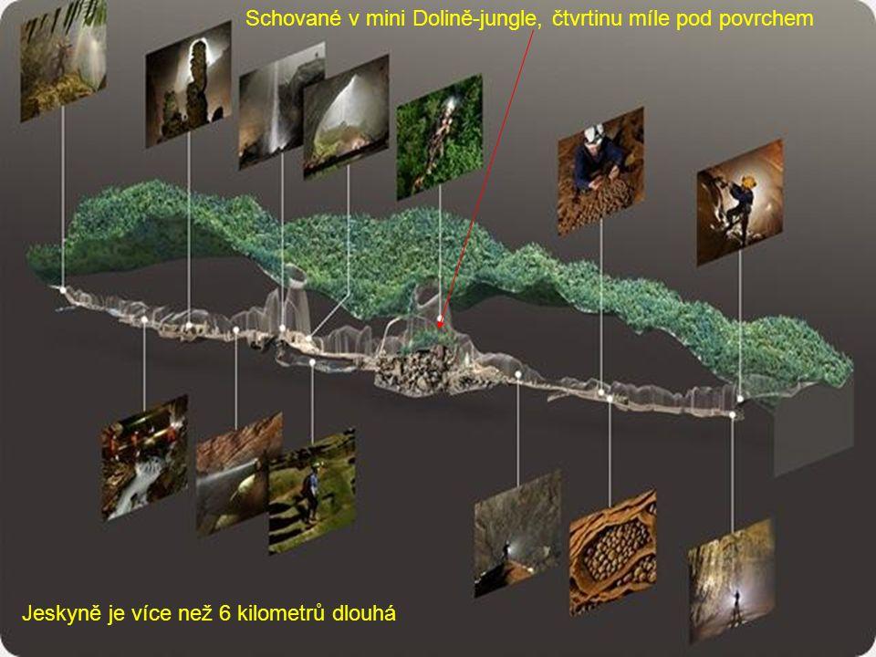 Schované v mini Dolině-jungle, čtvrtinu míle pod povrchem