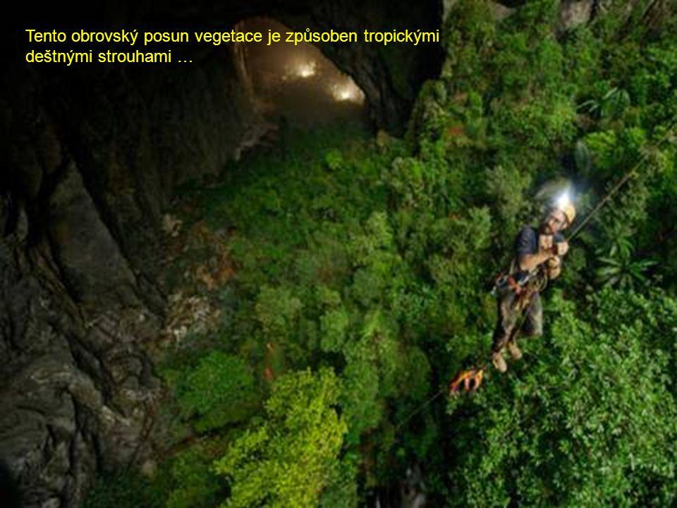 Tento obrovský posun vegetace je způsoben tropickými deštnými strouhami …