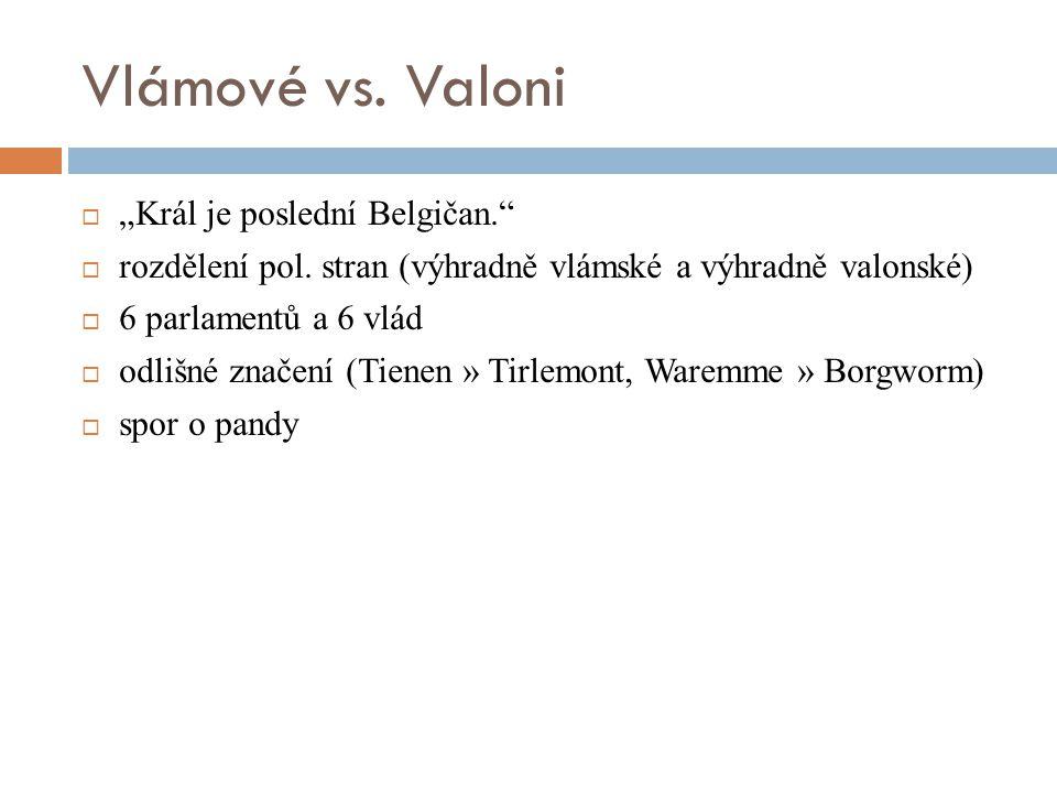 """Vlámové vs. Valoni """"Král je poslední Belgičan."""