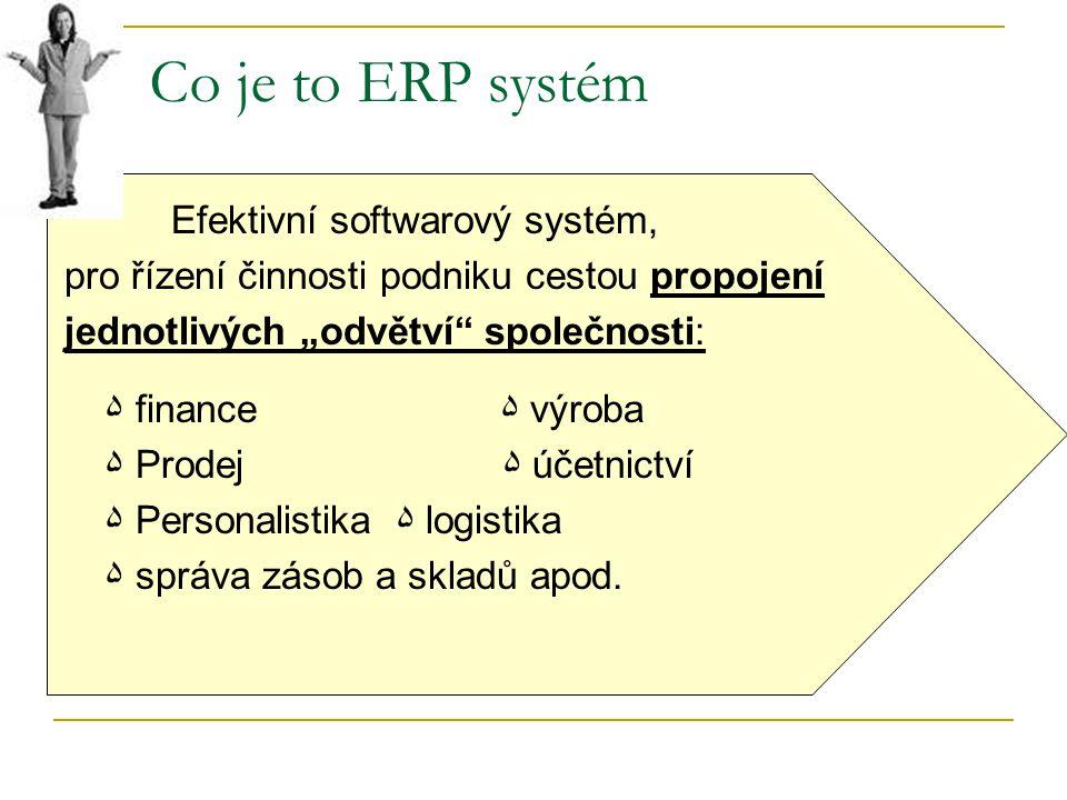 Co je to ERP systém Efektivní softwarový systém,