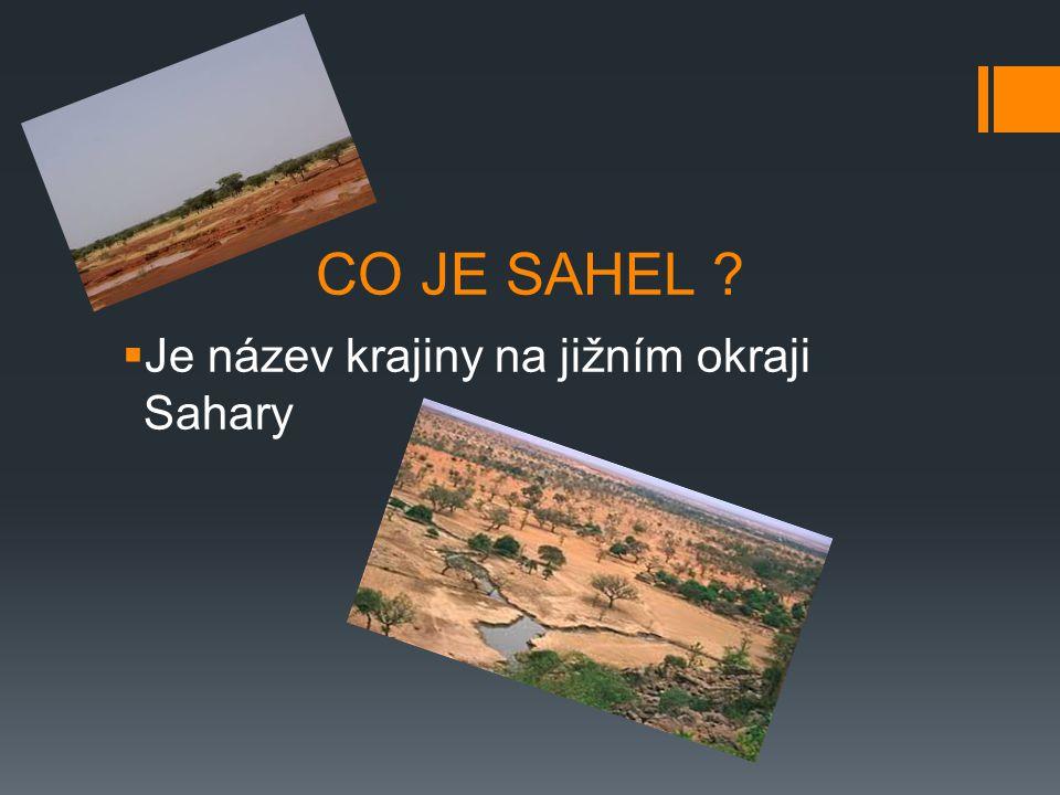 CO JE SAHEL Je název krajiny na jižním okraji Sahary