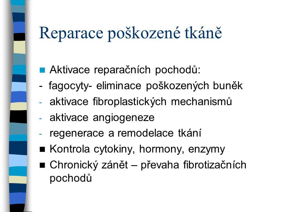 Reparace poškozené tkáně