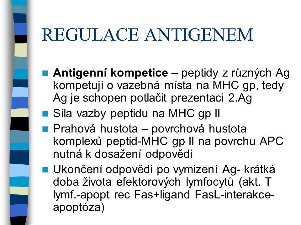 REGULACE ANTIGENEM Antigenní kompetice – peptidy z různých Ag kompetují o vazebná místa na MHC gp, tedy Ag je schopen potlačit prezentaci 2.Ag.