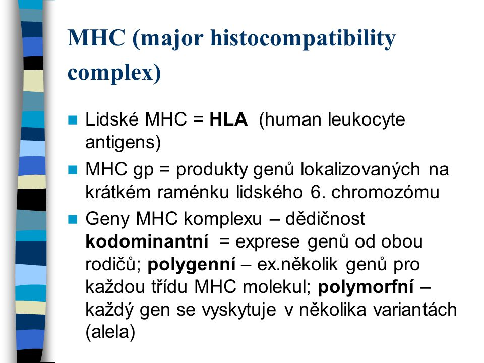 MHC (major histocompatibility complex)