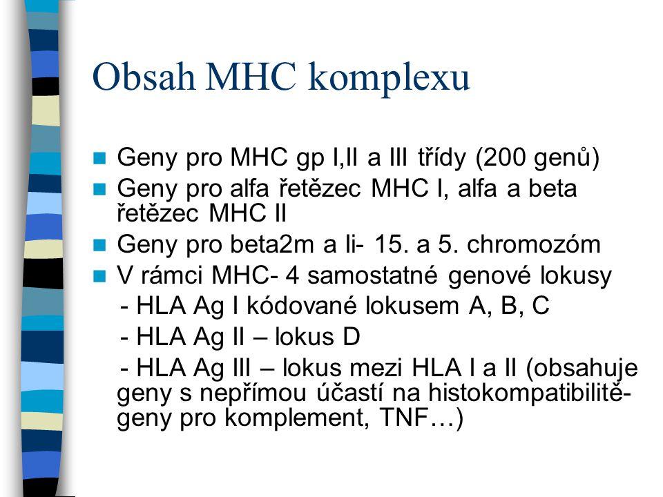 Obsah MHC komplexu Geny pro MHC gp I,II a III třídy (200 genů)