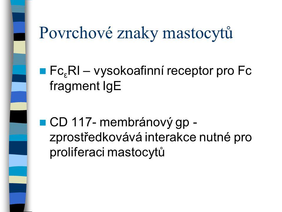 Povrchové znaky mastocytů