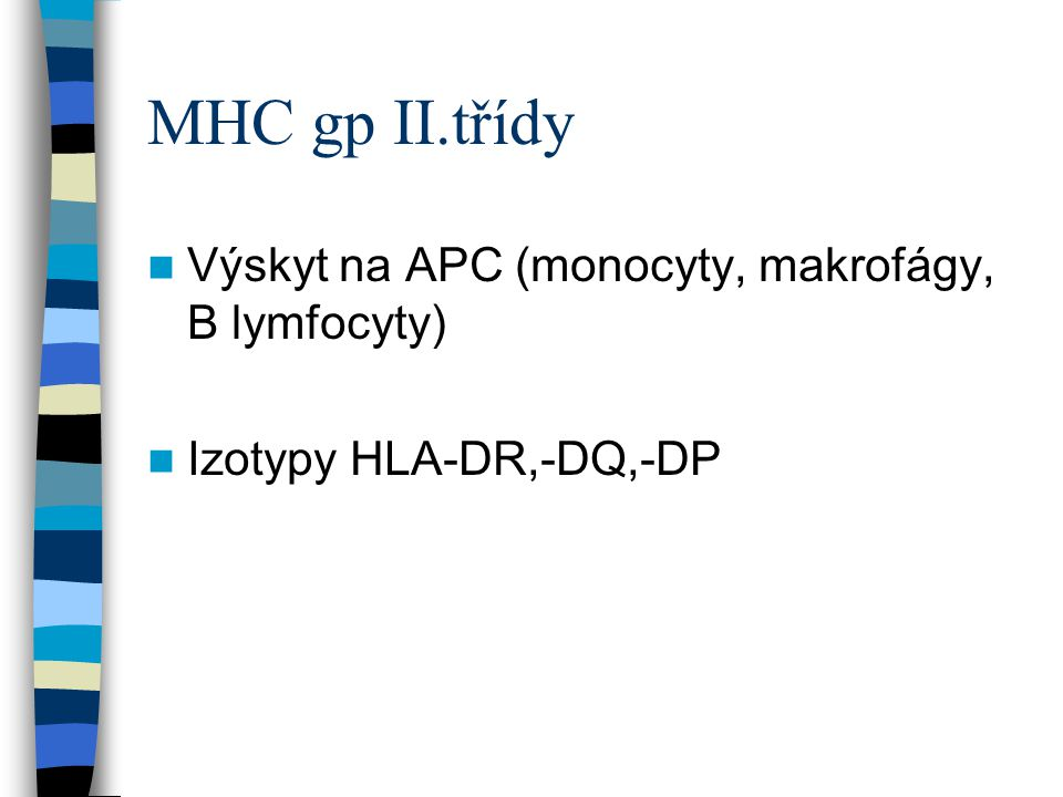 MHC gp II.třídy Výskyt na APC (monocyty, makrofágy, B lymfocyty)