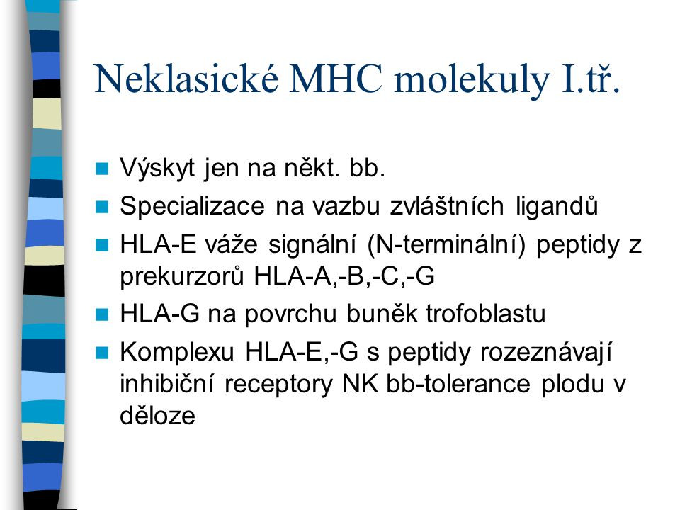 Neklasické MHC molekuly I.tř.
