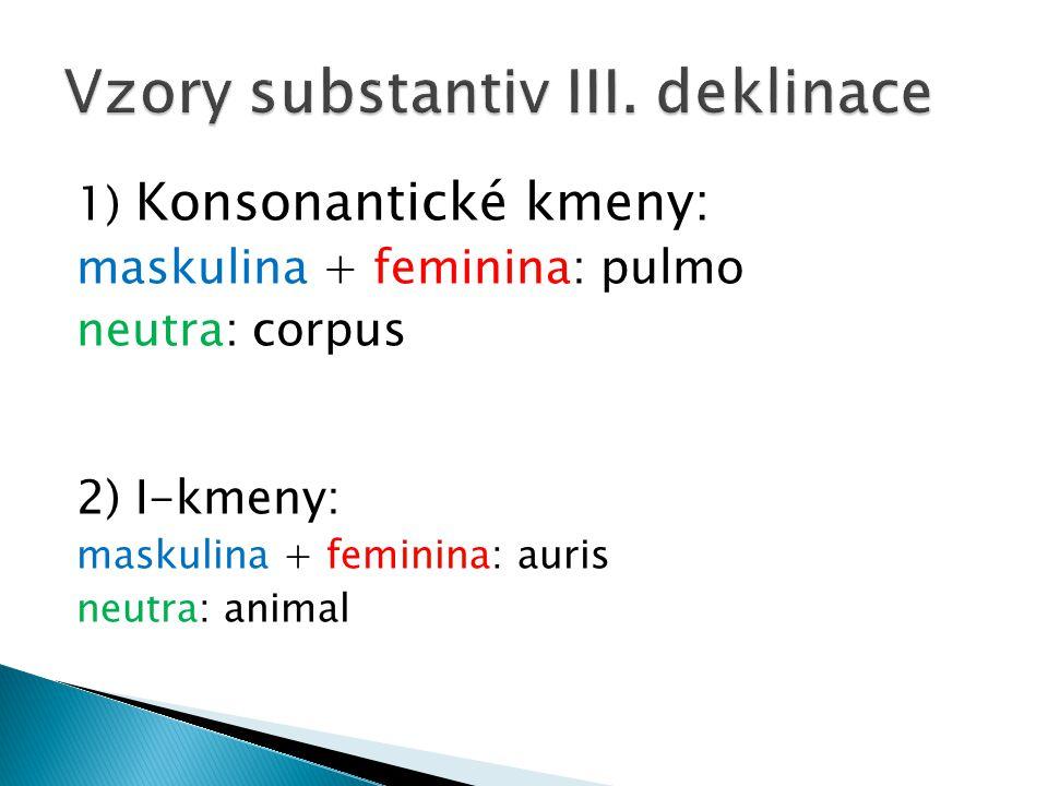 Vzory substantiv III. deklinace