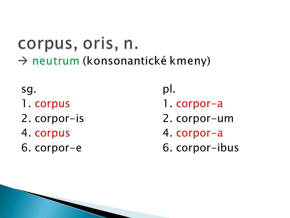 corpus, oris, n.  neutrum (konsonantické kmeny)