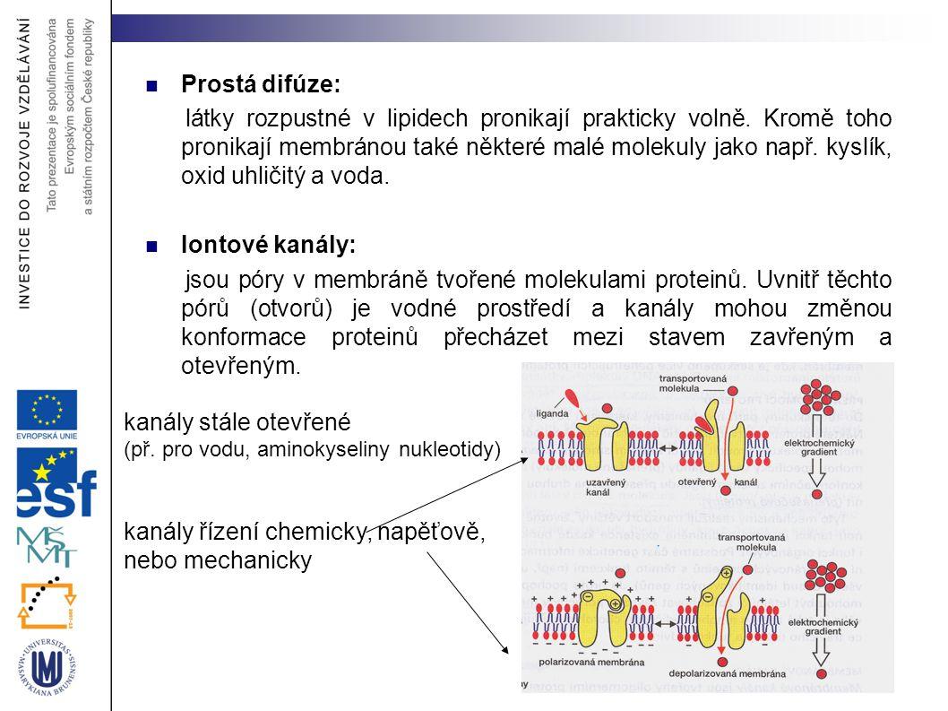 kanály řízení chemicky, napěťově, nebo mechanicky