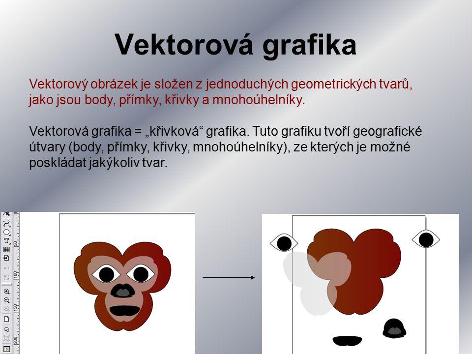 Vektorová grafika Vektorový obrázek je složen z jednoduchých geometrických tvarů, jako jsou body, přímky, křivky a mnohoúhelníky.