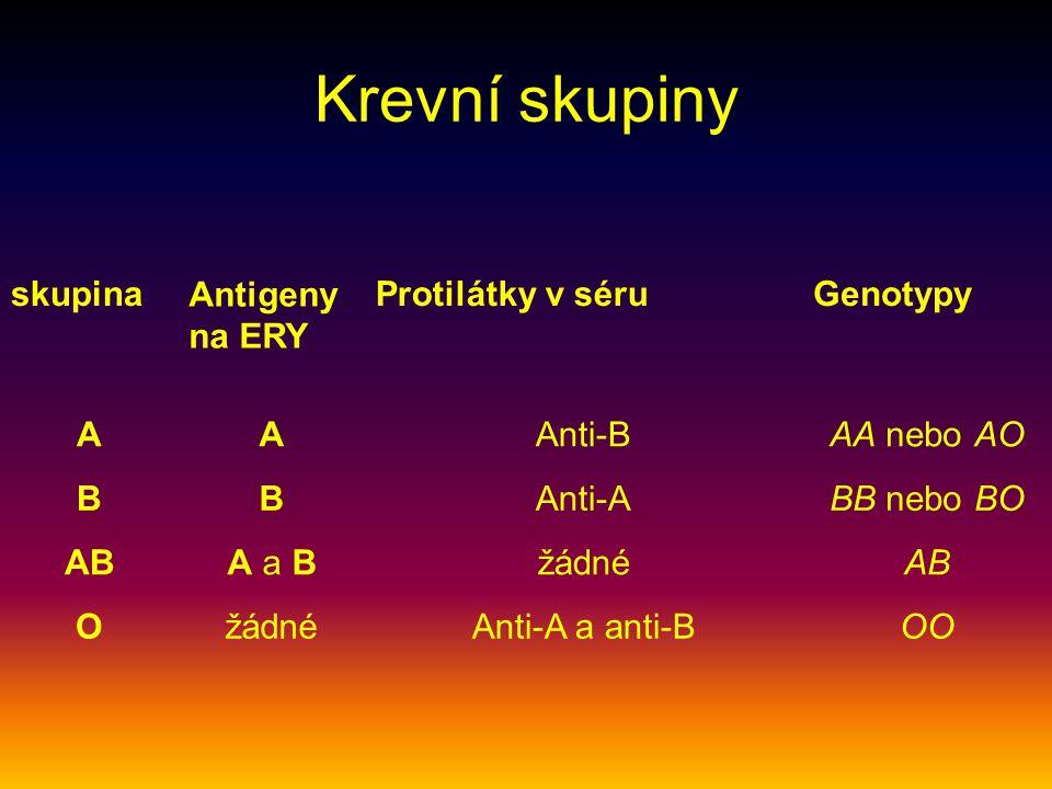 Krevní skupiny skupina Antigeny na ERY Protilátky v séru Genotypy A