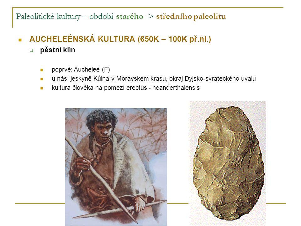 Paleolitické kultury – období starého -> středního paleolitu