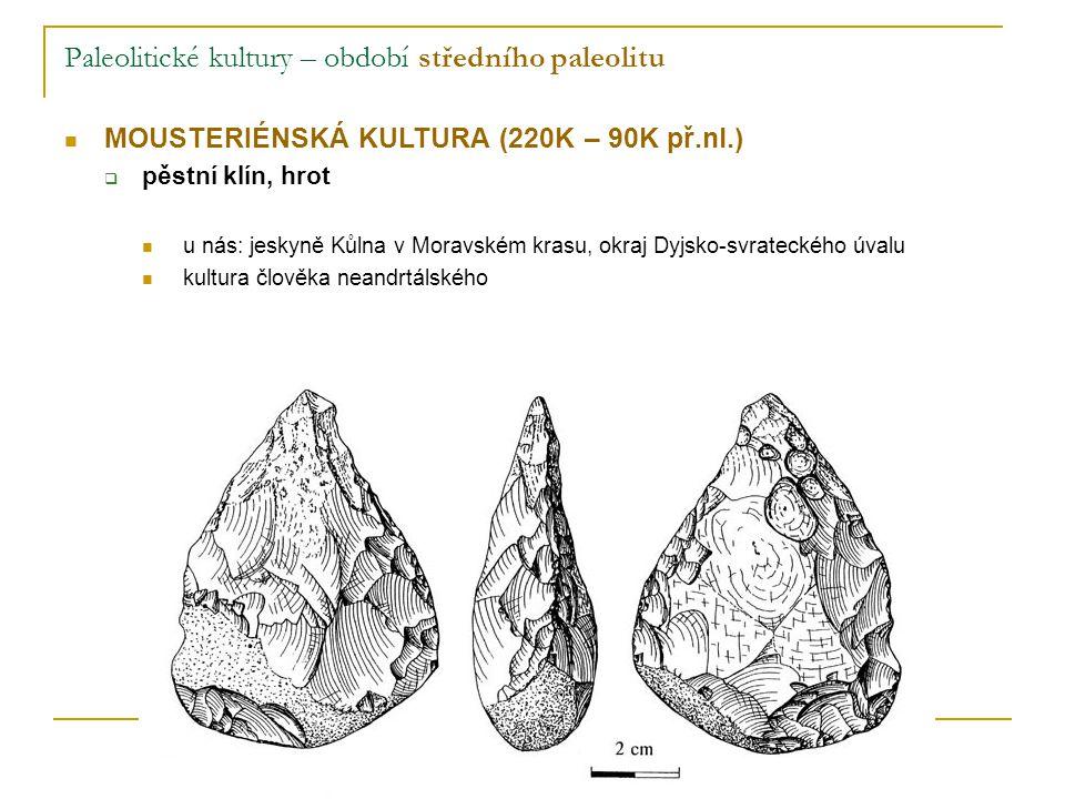Paleolitické kultury – období středního paleolitu