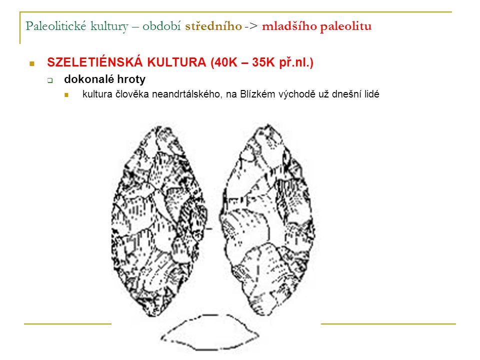 Paleolitické kultury – období středního -> mladšího paleolitu