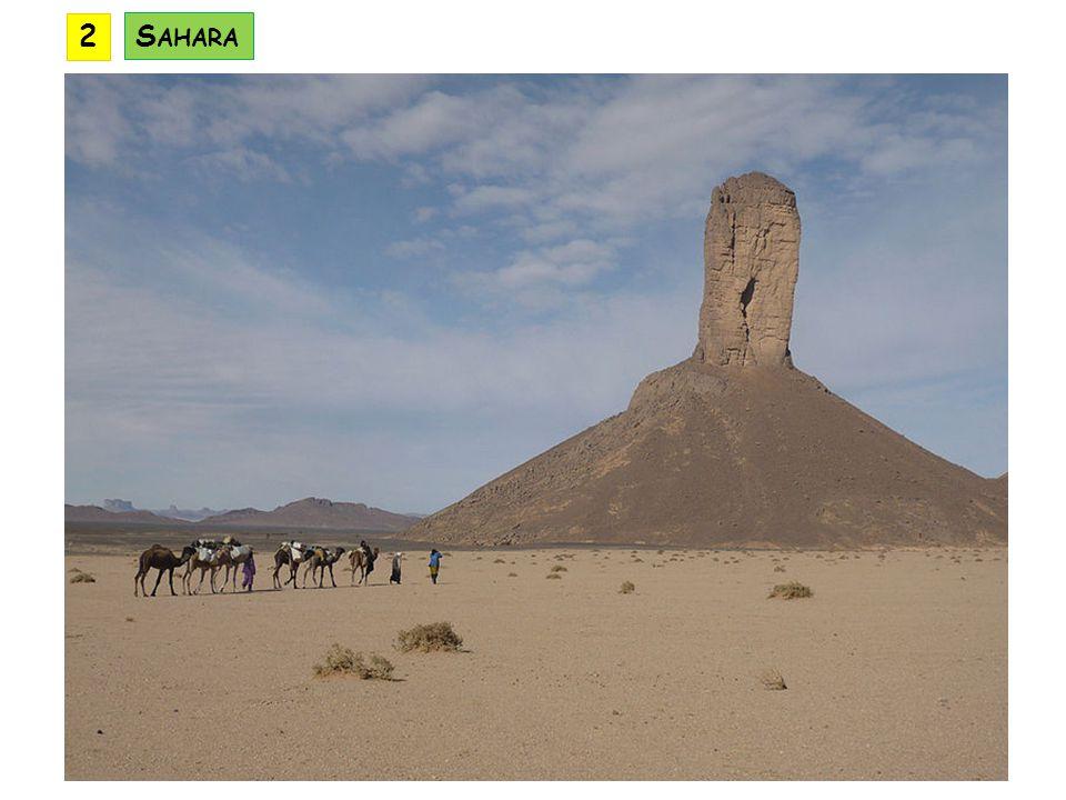 2 Sahara