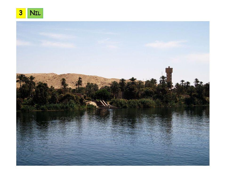 3 Nil