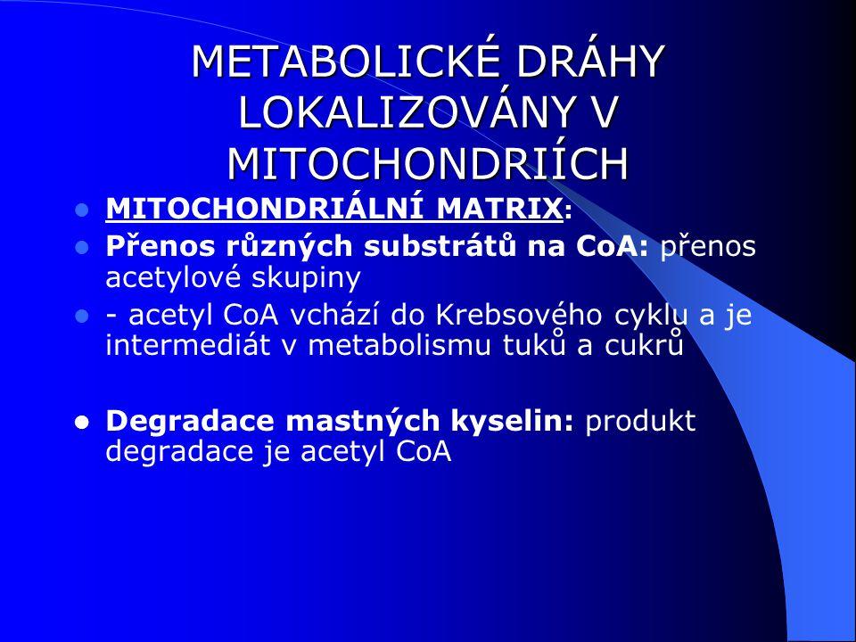 METABOLICKÉ DRÁHY LOKALIZOVÁNY V MITOCHONDRIÍCH