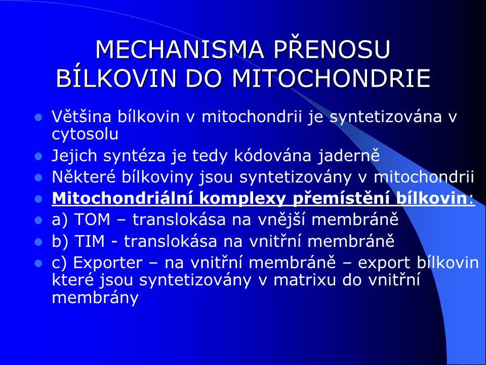 MECHANISMA PŘENOSU BÍLKOVIN DO MITOCHONDRIE