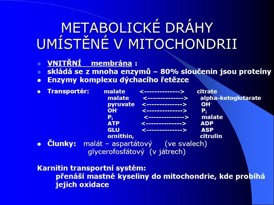 METABOLICKÉ DRÁHY UMÍSTĚNÉ V MITOCHONDRII
