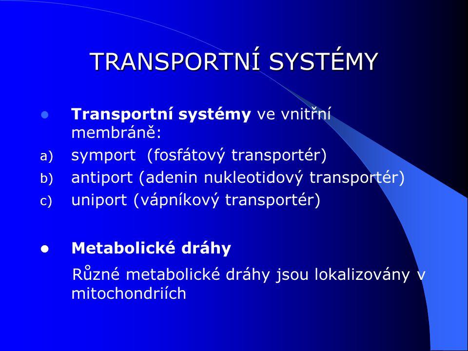 TRANSPORTNÍ SYSTÉMY Transportní systémy ve vnitřní membráně: symport (fosfátový transportér) antiport (adenin nukleotidový transportér)