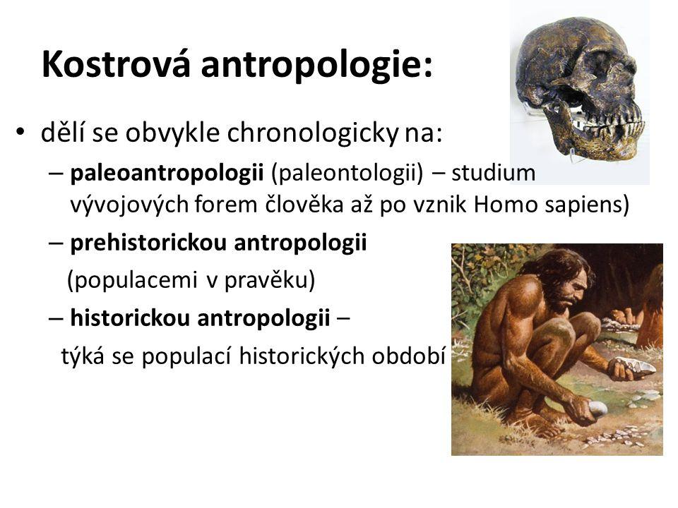 Kostrová antropologie: