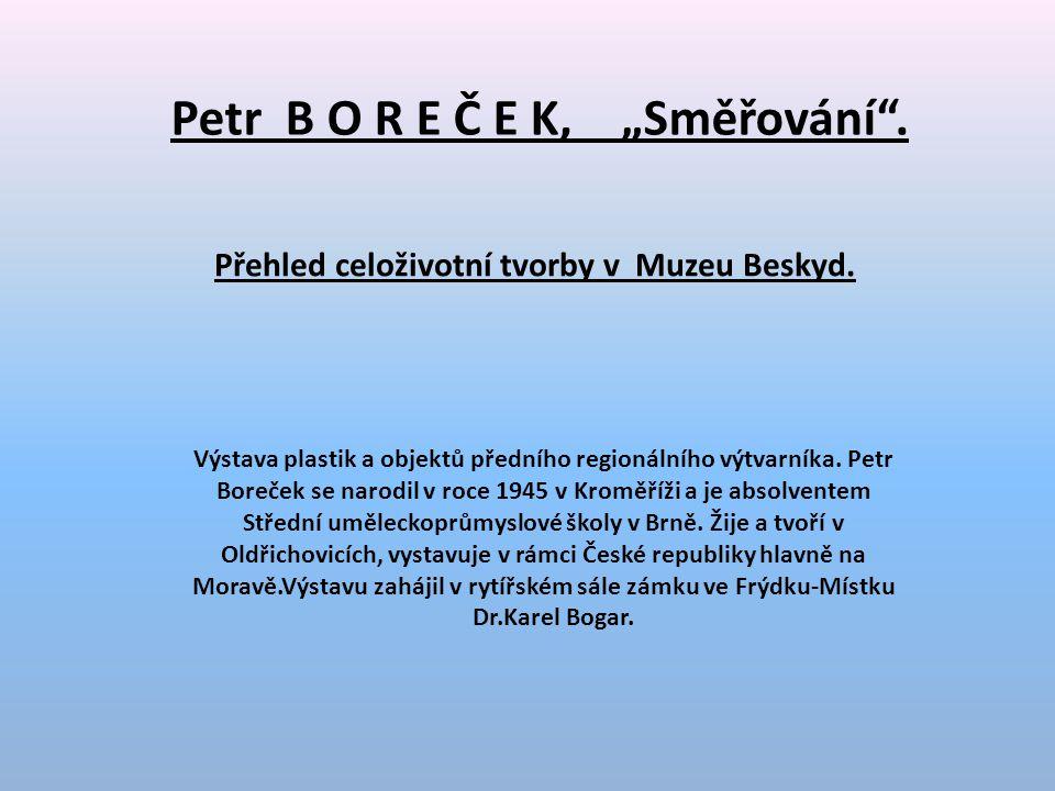 """Petr B O R E Č E K, """"Směřování ."""