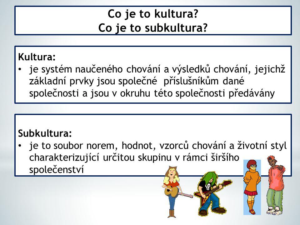 Co je to kultura Co je to subkultura
