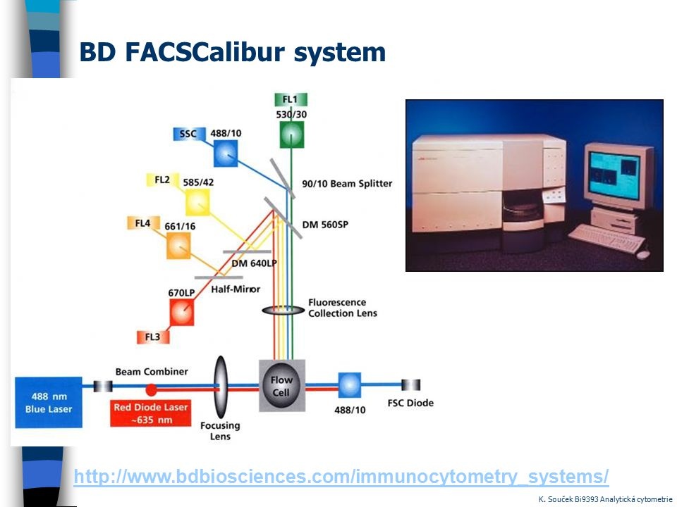 BD FACSCalibur system http://www.bdbiosciences.com/immunocytometry_systems/ K.