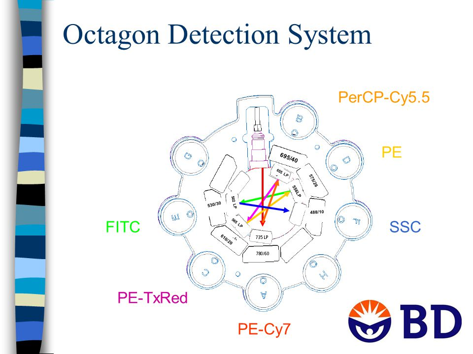 Octagon Detection System