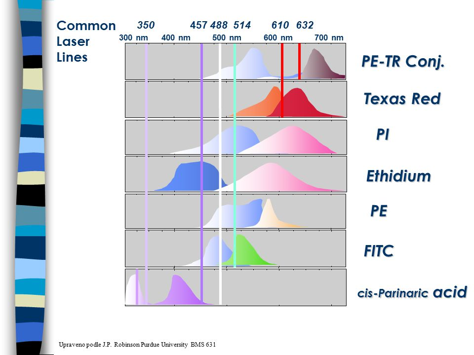 PE-TR Conj. Texas Red PI Ethidium PE FITC Common Laser Lines