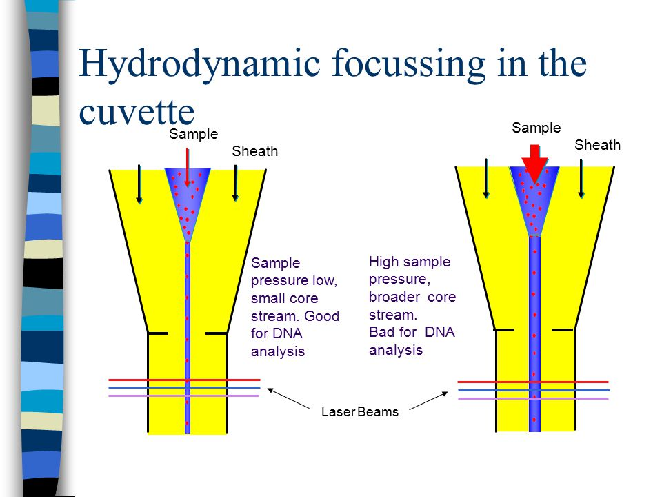 Hydrodynamic focussing in the cuvette