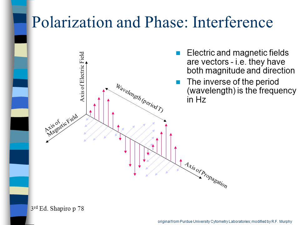 Polarization and Phase: Interference