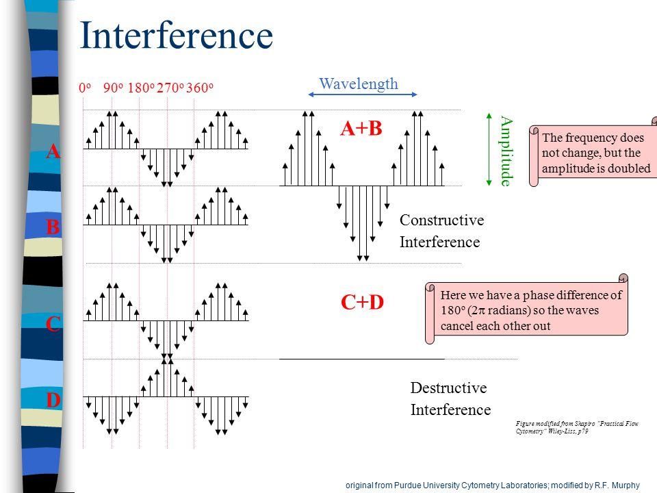 Interference A+B A B C+D C D Wavelength Amplitude Constructive