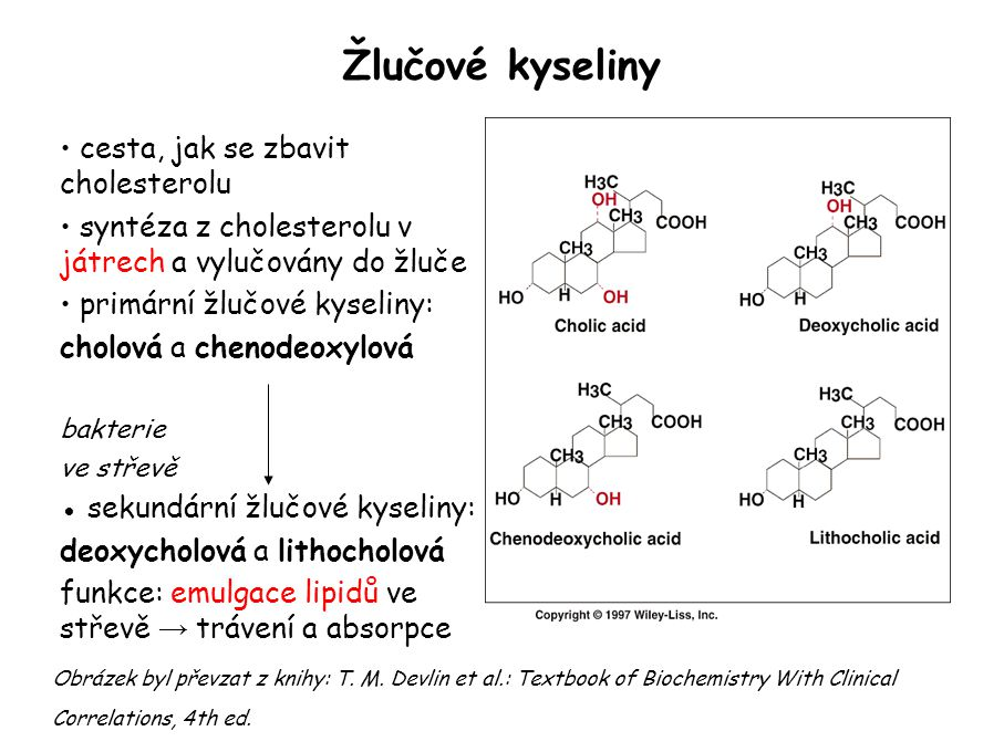 Žlučové kyseliny cesta, jak se zbavit cholesterolu