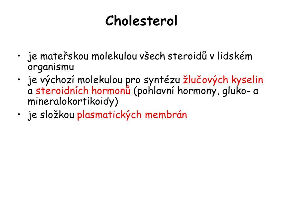 Cholesterol je mateřskou molekulou všech steroidů v lidském organismu