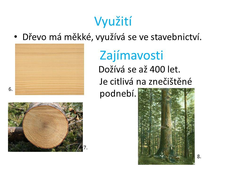 Využití Zajímavosti Dřevo má měkké, využívá se ve stavebnictví.