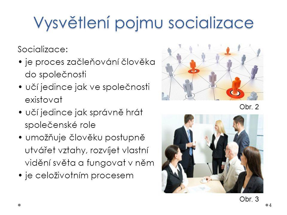 Vysvětlení pojmu socializace
