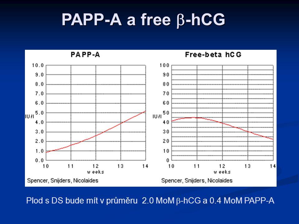 Plod s DS bude mít v průměru 2.0 MoM b-hCG a 0.4 MoM PAPP-A
