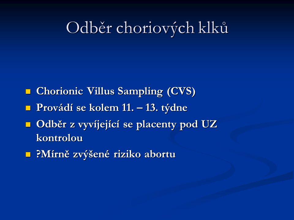 Odběr choriových klků Chorionic Villus Sampling (CVS)