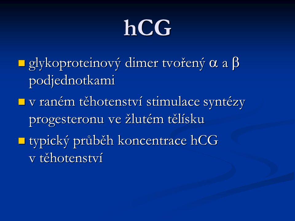 hCG glykoproteinový dimer tvořený a a b podjednotkami