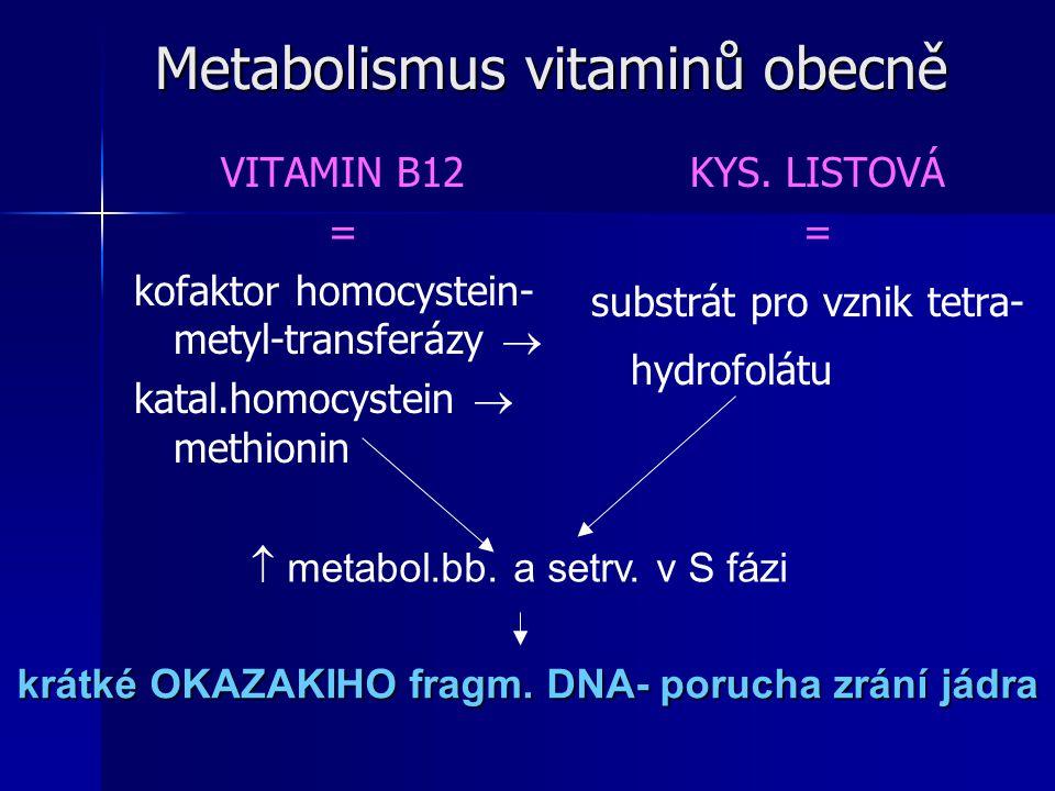 Metabolismus vitaminů obecně