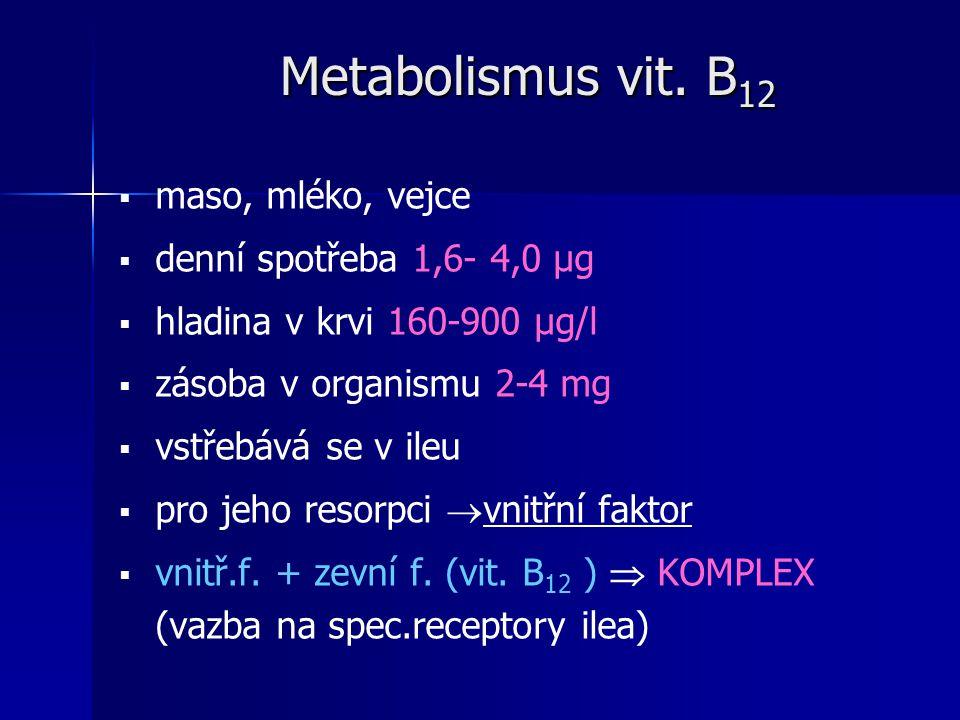 Metabolismus vit. B12 maso, mléko, vejce denní spotřeba 1,6- 4,0 μg