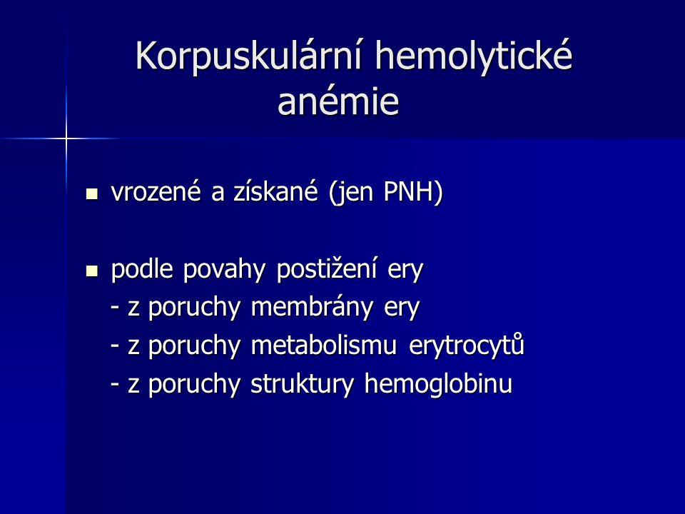 Korpuskulární hemolytické anémie