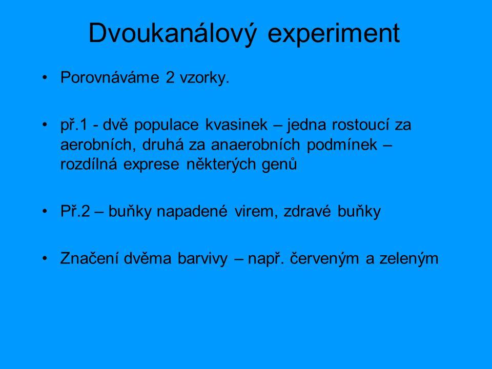 Dvoukanálový experiment