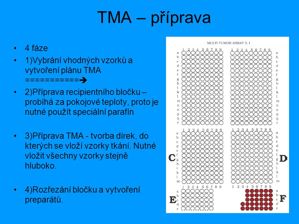 TMA – příprava 4 fáze. 1)Vybrání vhodných vzorků a vytvoření plánu TMA ===========